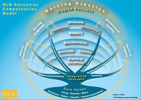Nursing Practice Outcomes